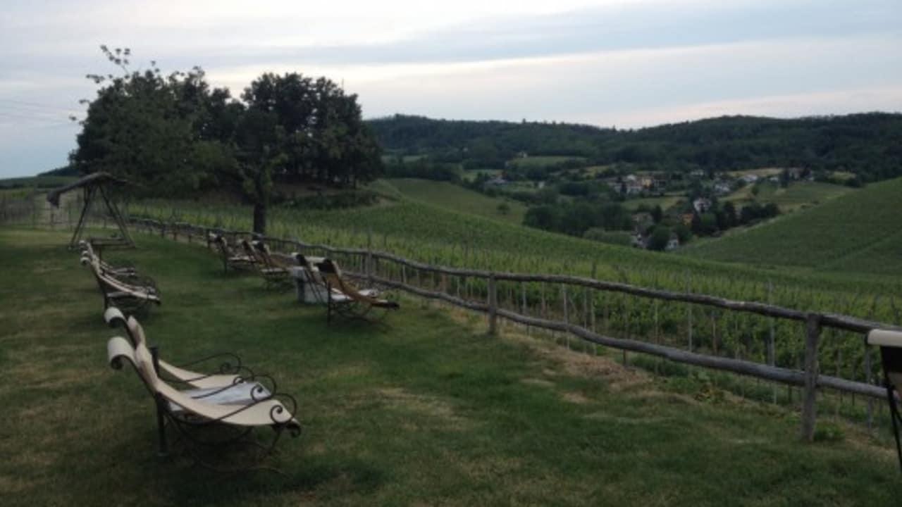 Liegestühle an der Villa Sparina. Von dort genießt der Besucher am besten bei einem Schluck Gavi den Ausblick auf die Weinberge und die Sonne. (Foto: Weihrauch)