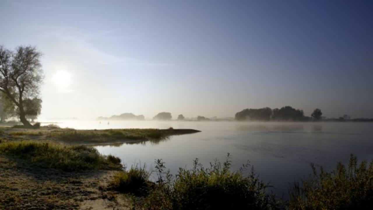 Das Biosphaerenreservat in der Flusslandschaft der Elbe. (Foto: Hamburg Marketing GmbH)