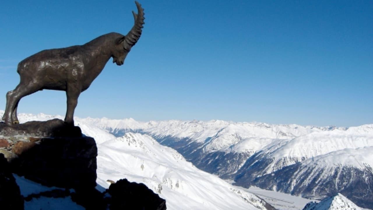 Der Steinbock am Piz Nair wacht über die Skipisten von St. Moritz (Foto: M.a.r.c.)