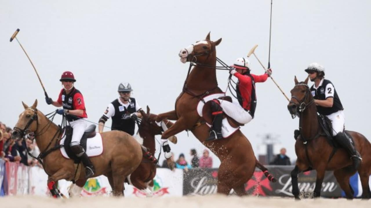 <h2>Turniere</h2>