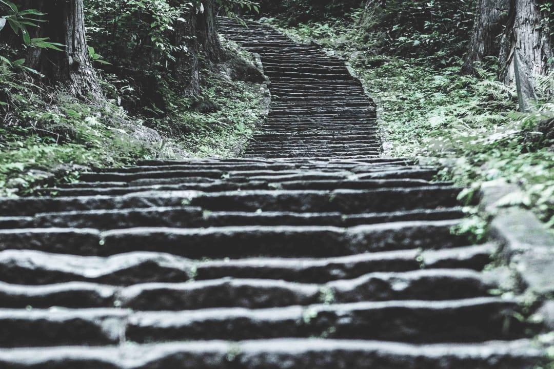 1,000 steps (1)