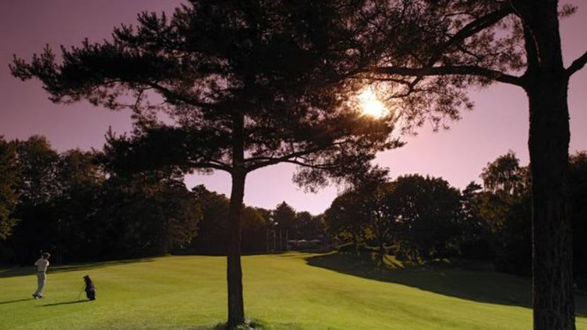 Hamburger LGC Hittfeld - Golfclub in Seevetal