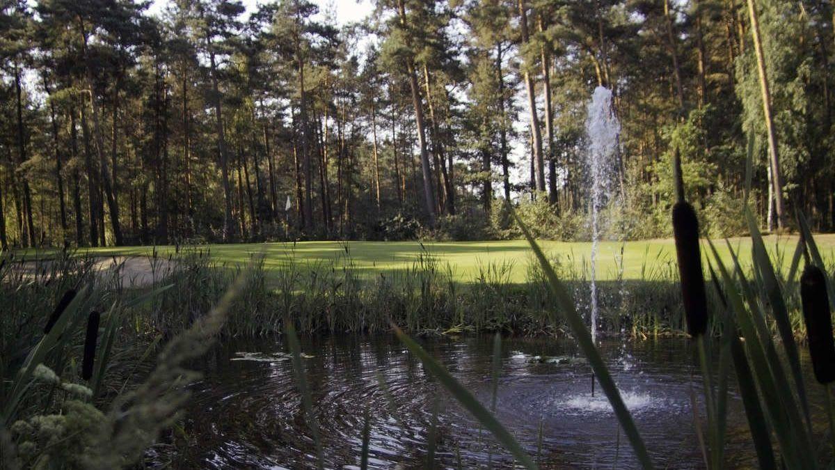 Burgdorfer GC - Golfclub in Burgdorf/Ehlershausen