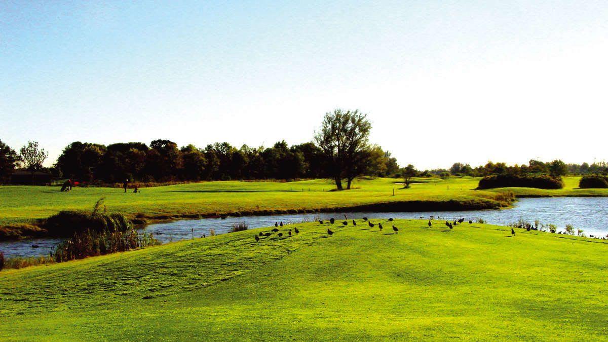 GC Wilhelmshaven-Friesland - Golfclub in Schortens/Accum