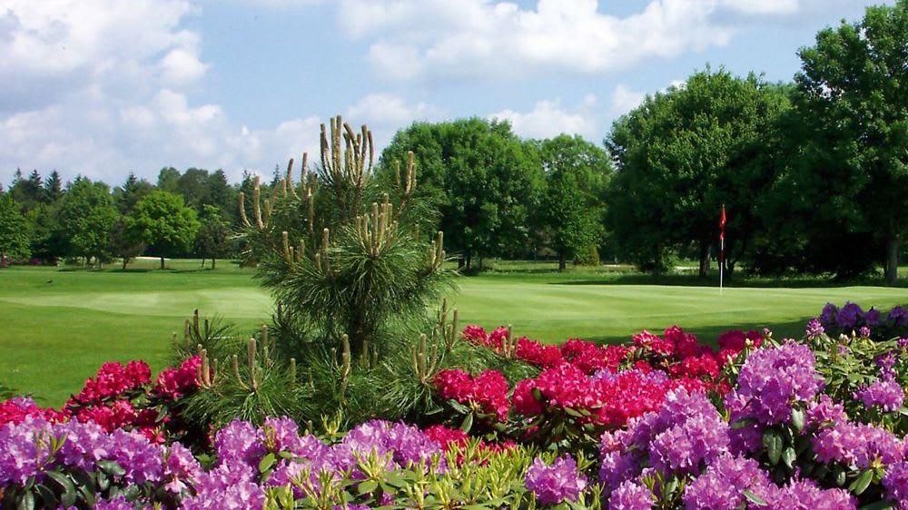 GC Ostfriesland - Golfclub in Wiesmoor-Hinrichsfehn