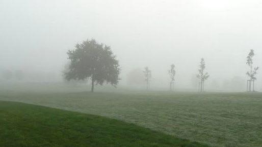 GCC Leinetal - Golfclub in Einbeck-Immensen