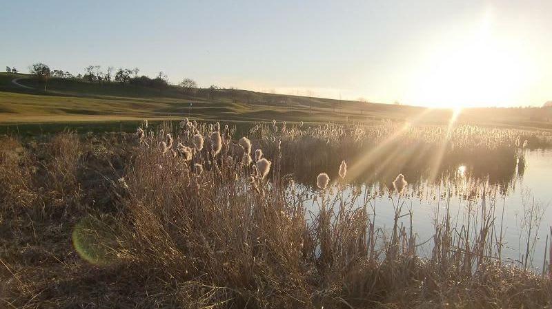 Golfpark Rothenburg-Schönbronn - Golfclub in Buch am Wald