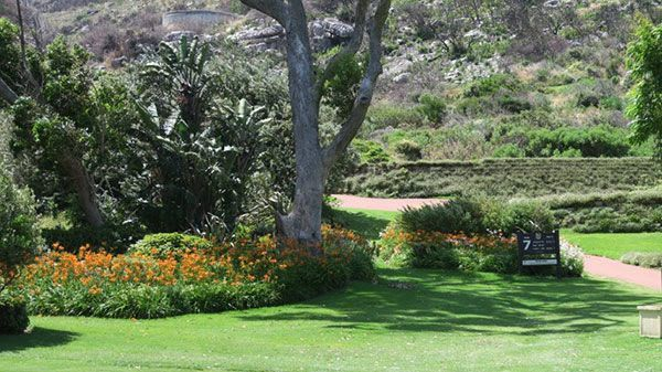 Clovelly Country Club - Golfclub in Kapstadt