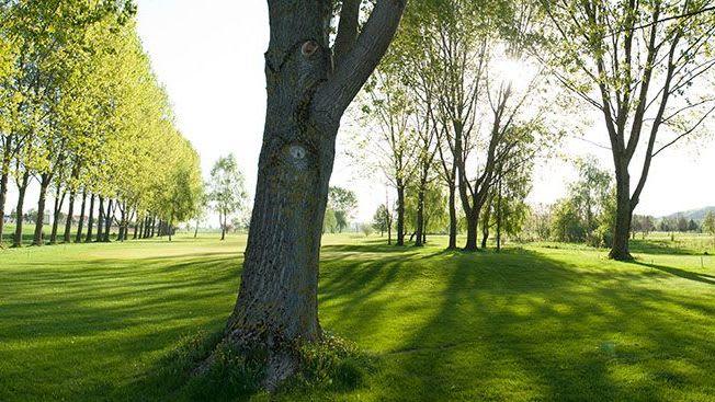 GC Schloss Ernegg - Golfclub in Steinakirchen/Forst