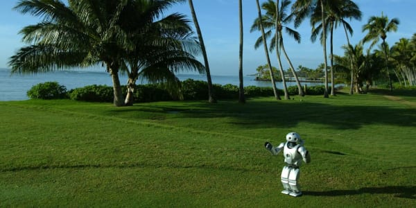 Roboter auf dem Golfplatz