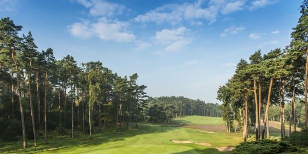 Die Golfregion Hamburg - Eine der attraktivsten Golfdestinationen Europas (Foto: Golfregio Hamburg)