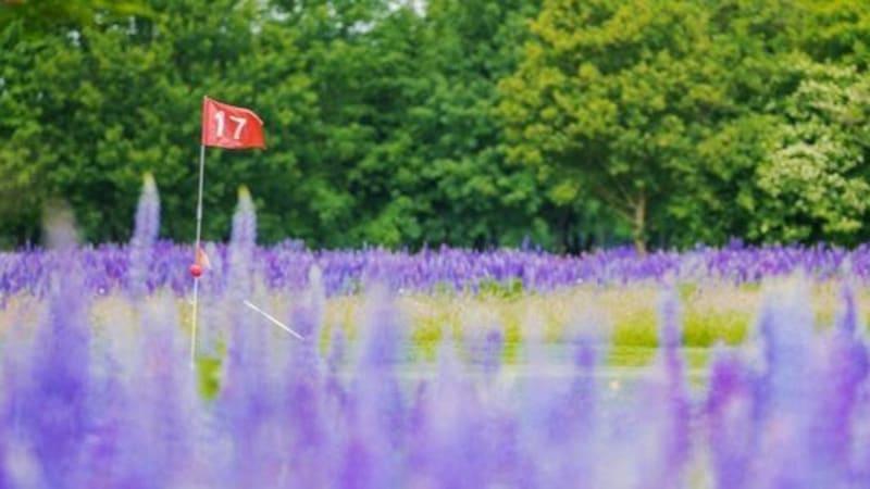 Jetzt den Greenfee-Gofkalender 2020 vorbestellen und 2für1 Greenfees der schönsten Golfclubs in Deutschland für die Golfsaison 2020 sichern!