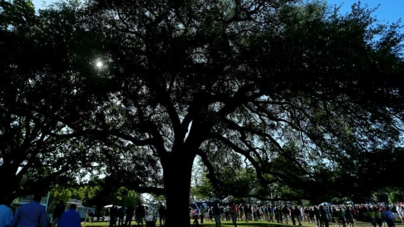 Der berühmte Eisenhower Tree wurde am Wochenende schwer beschädigt. (Foto: Getty)