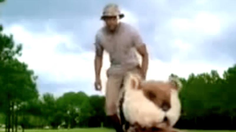 In diesem Golfwerbespot von American Express bekämpft Tiger Woods Nager auf dem Golfplatz. (Foto: Video)