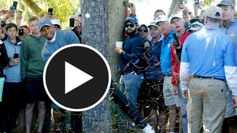 Tiger Woods beeindruckt mit unglaublichen Schlägen zum Auftakt. (Foto: Getty)
