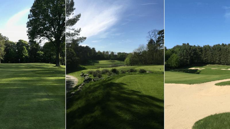Der Arnold Palmer Course in Bad Saarow überzeugte uns in allen Belangen. (Foto: Golf Post)