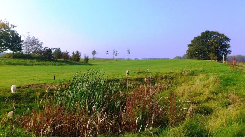 Beim Golfplatz Werne an der Lippe wurde vieles erneuert. (Foto: allsquaregolf)