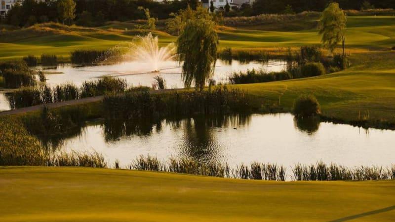 Der Kölner Golfclub legt einen hohen Wert auf auf eine Platzpflege ohne Chemie. (Foto: Kölner Golfclub)