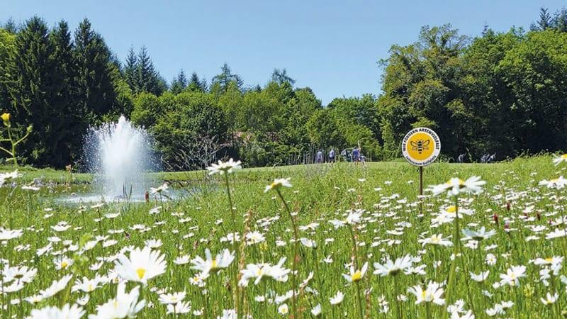 Der Deustche Golf Verband setzt zunehmend auf das Thema Biodiversität, um sich gesellschaftlich zu etablieren. (Foto: DGV)