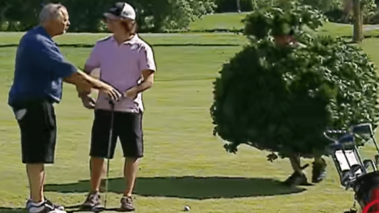 Loser hinderlicher Naturstoff oder bewegliches Hemmnis? Den Golfer wird's auf jeden Fall ärgern - und uns amüsiert's! (Foto: Youtube)