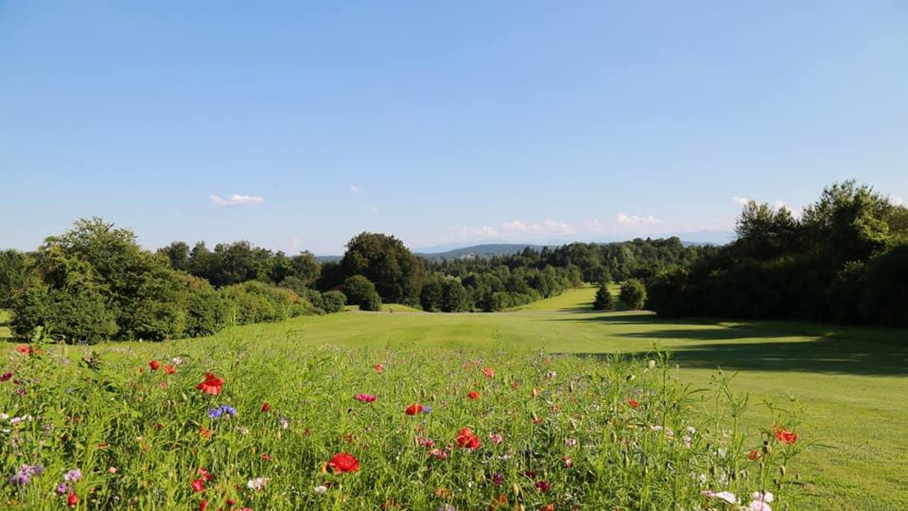 Golfanlage Gut Rieden: Hier lässt sich das Golf spielen genießen (Foto: Facebook.com/Golfanlage Gut Rieden)