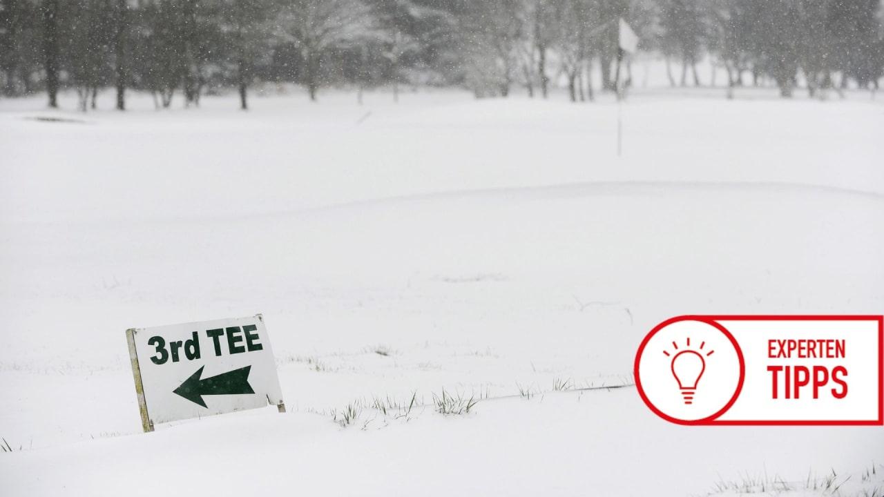 wintergruens-expertentipp-neu