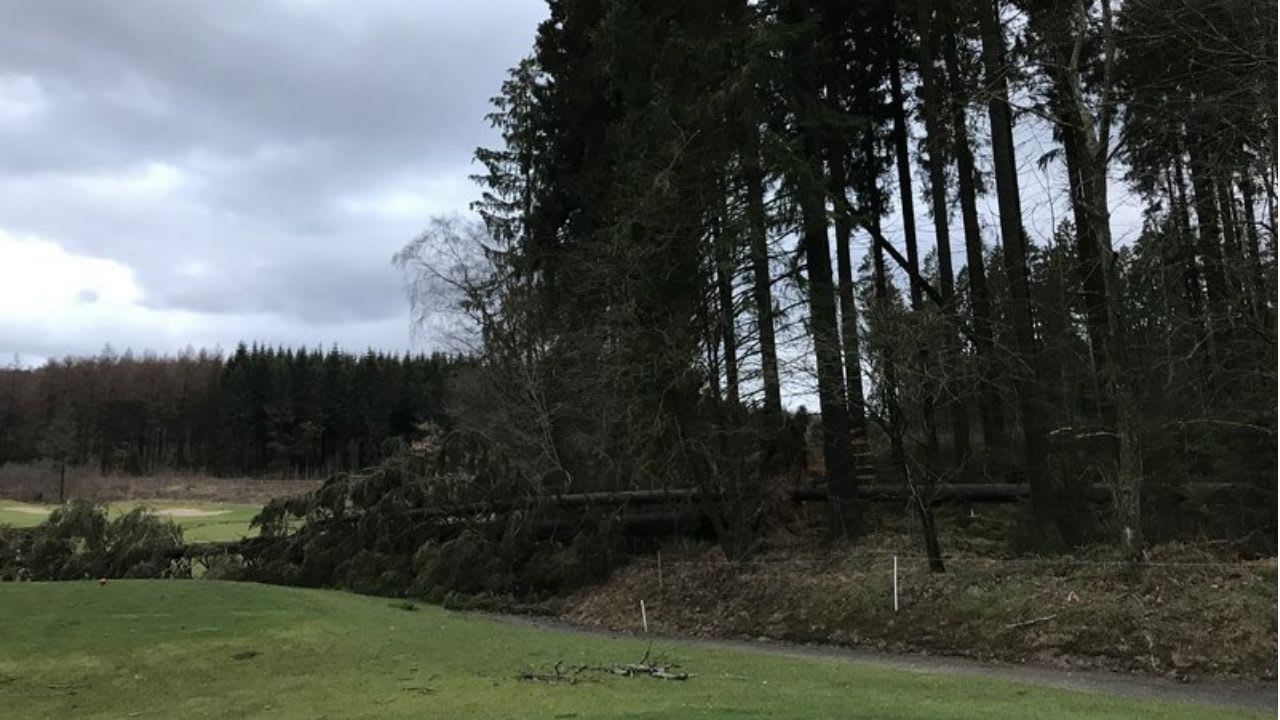 Derzeit ist der Golfplatz in Siegen-Olpe aufgrund von umgekippten Bäumen bis aufs Weitere gesperrt. (Bildquelle: GC Siegen-Olpe)