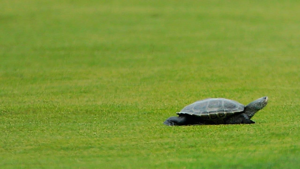 Für die Saison 2020 hat die European Tour einen 4-Punkte-Plan gegen Slow Play entwickelt. (Foto: Getty)