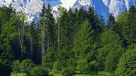 Golfplatz in Oberau