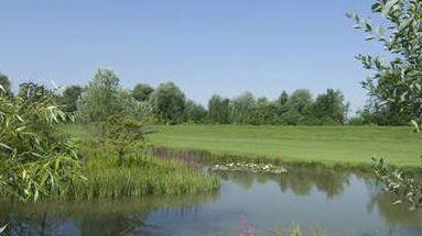 Golfplatz in Rieden