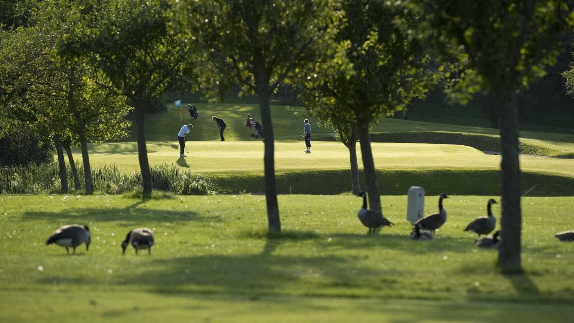 Golfplatz in Dänischenhagen