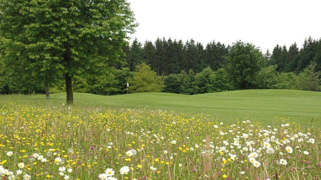 Golfplatz in Starnberg-Hadorf
