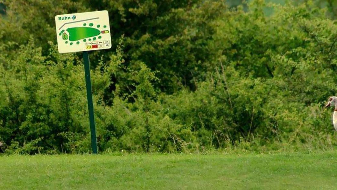 Golfplatz in Waldeck