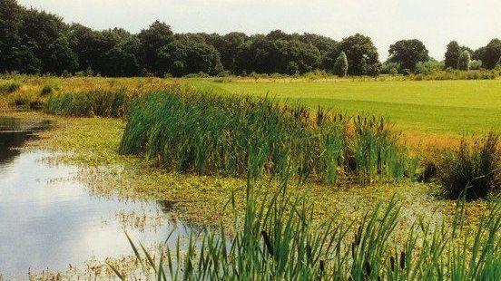 Golfplatz in Herten-Westerholt