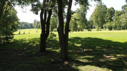 GC Münster-Wilkinghege - Golfclub in Münster