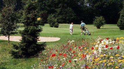 GC Gut Immenbeck - Golfclub in Buxtehude