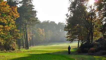 GC Herzogstadt Celle - Golfclub in Celle-Garssen