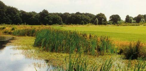GC Schloß Westerholt - Golfclub in Herten-Westerholt