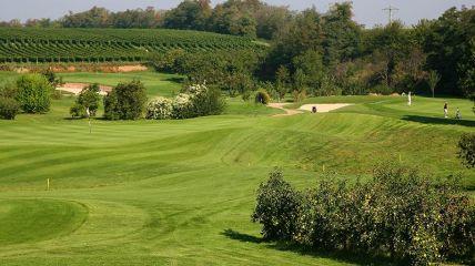 Golfgarten Deutsche Weinstraße - Golfclub in Dackenheim