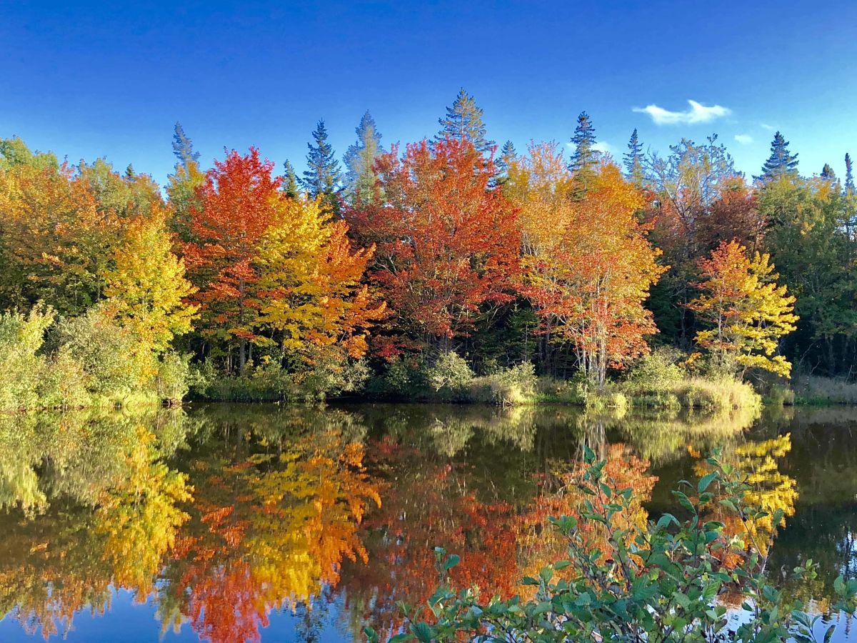In Kanada wartet neben spektakulären Golfplätzen auch eine wunderschöne Natur. (Foto: Jürgen Linnenbürger)