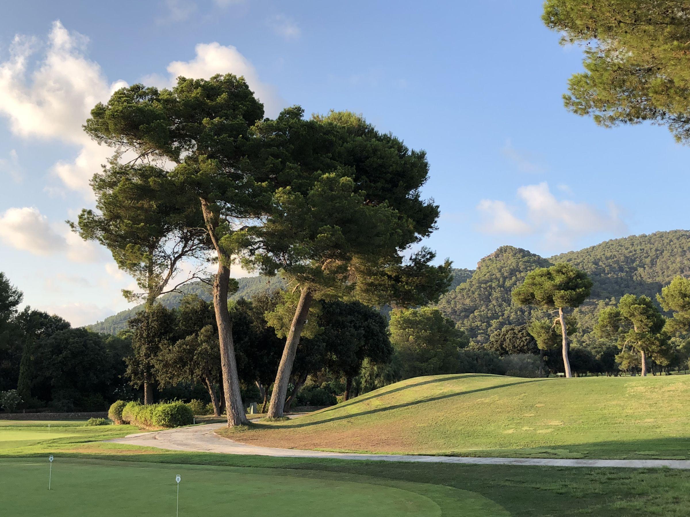 Golf Son Servera