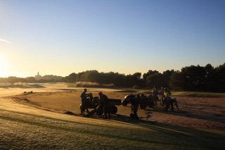 Neues Gras für die Grüns des Club de Golf Alcanada. (Foto: Azalea Group)