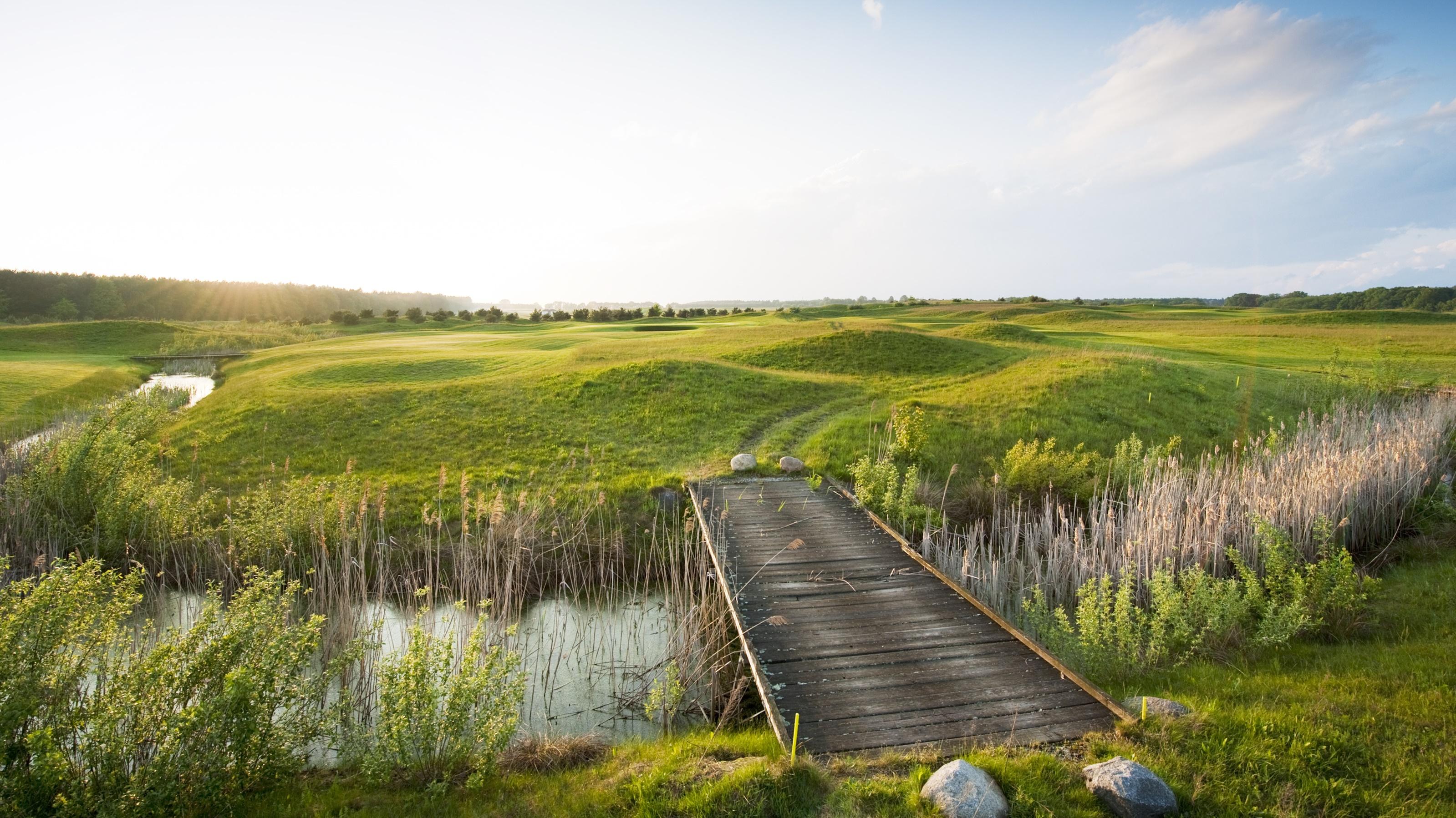 Highlight des Golfangebots in Bad Saarow ist der Faldo Course im schottischen Links-Design. (Foto: A-Rosa)