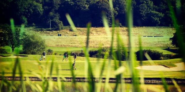 Golfers Playing