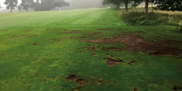 Course Damage