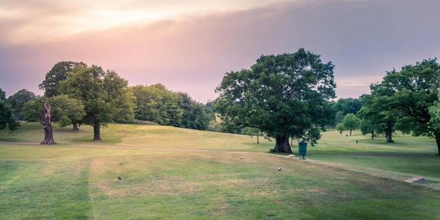 Stoneleight Deer Park