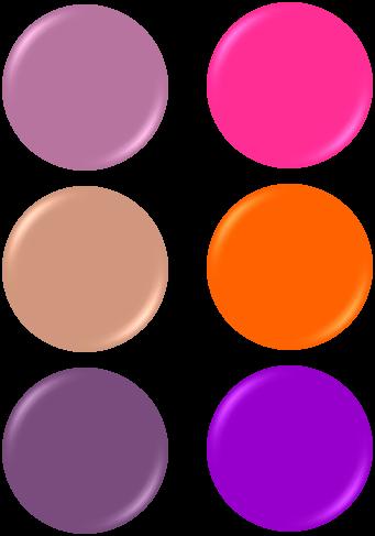 color-saido-image