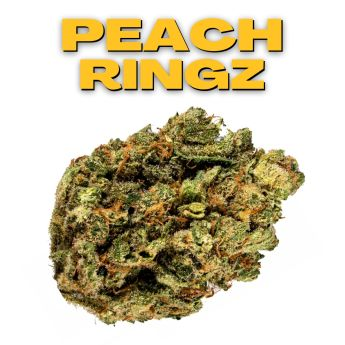 GT Peach Ringz 8th (THC 27.33%)