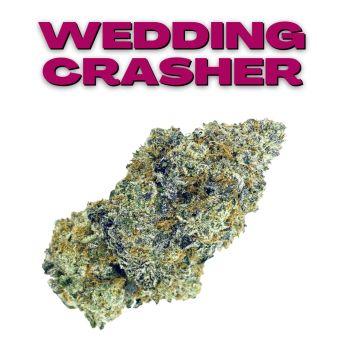 GT Wedding Crasher 8th (THC 23.81%)