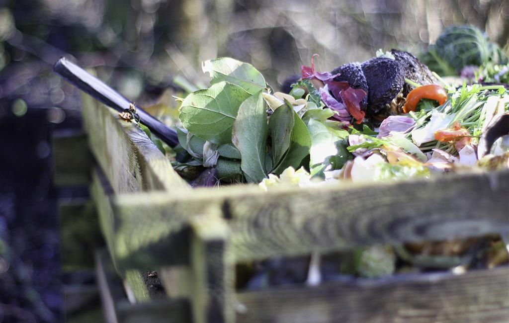 reduce-food-wastage